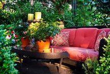 Garden / by Twiwanda Devauld-bryant