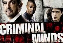 Criminal Minds / My favourite tv show ever, I thought it might go downhill when Mandy Patinkin left, but it got better, not sure about Jennifer Love Hewitt though am waiting to see her episodes here in Australia.