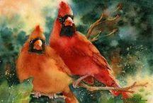 birds / by Marlene Sanderson