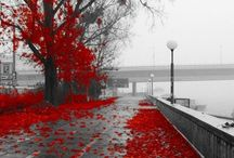 Fall/Autumn / Beautiful scenery