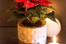 Weihnachtswunderland / Deko- und Bastelideen rund um Weihnachten