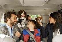 Toyota's Best Friends / Traveling on the road in your Toyota is even better with your furry best friends.  / by Toyota USA