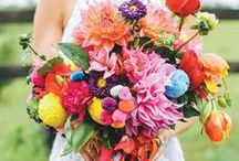 COLORFUL Wedding {hues} / by Appy Couple
