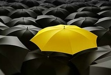 Umbrellas / by Bruce Linker