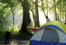 Camping / by Heather Shirin