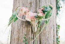 Wedding Ideas! / by Mindy Mayhew