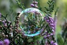 Secret Gardens / Beautiful garden art and ideas for whimsical spaces