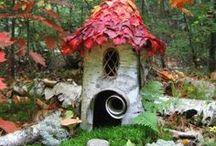 Fairy garden / by Rebecca Van Orden