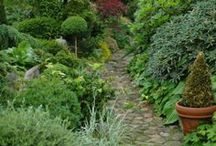Gardening / by Sonja Milbourn