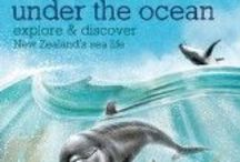 Explore NZ Sea Life for kids / The marine environment around New Zealand is special. Around our islands currents converge to create habitats for whales, dolphins, penguins, fish and many more different sea creatures. Here are some craft and education ideas as well as more sources of information.