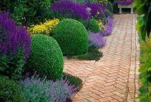 Garden ideas / by Gabriel Perez