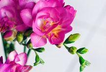 Blossoms & Greens