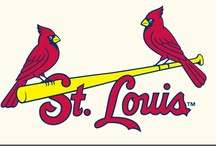 Cards Fan⚾ / I will be a St. Louis Cardinals fan until the day I die!  / by Kim Klosterhoff
