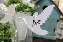 Reception / Great ideas for a wedding/birthday reception!