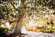 Dream wedding / One day in the future... / by Melissa Goodner
