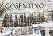 Harvest at Cosentino