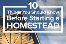 Homesteading 101 / ideas for homesteading for the beginner to the advanced!