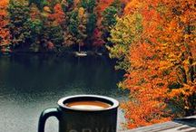 """Autumn Days / Warm cider, cool nights, frosty pumpkins, what a delight! Apples dressed in red, leaves waving goodbye, beautiful rainbow of colors dancing in the sky, that's what """"Autumn Days"""" is all about!"""