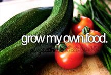 grow my own food