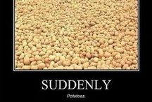 Suddenly... potatoes! / Recipes/ideas for the hundreds of pounds we have.