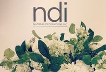 Behind the Scenes at NDI / A Sneak Peak Into How NDI Cultivates the Finest Faux Florals & Botanicals. / by NDI | Natural Decorations, Inc.