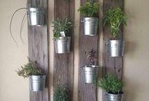 Corners with plants