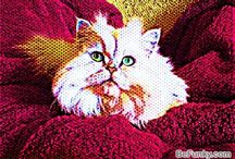 Cat Art / Cat Art, Painting, Sketches, Prints