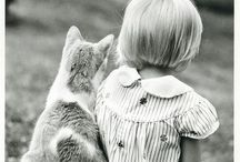 Cats and KIDtens / Cats and Children