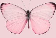 Pretty In Pink / by ZombieGirl