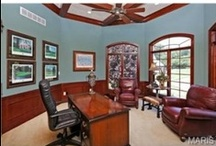 Office Spaces / Home offices and libraries that we just had to share.