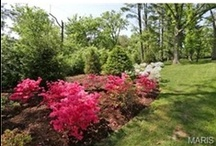 Landscaping & Gardens / Landscaping can add curb appeal and value to your home. These are some of our favorite ideas!