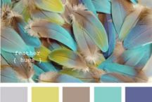 Color Me Inspired! / by Lynn Thomson