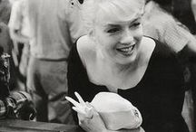 Marilyn - Casino Misfits / Marilyn Monroe in Nevada during filming of The Misfits in 1960.