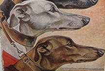 Greyhound Racing / Greyhound Racing throughout the ages.