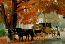 Colonial Williamsburg / by Deb Wolf
