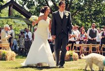 Beautiful July Wedding / Beautiful July Wedding at The Green Cornwall