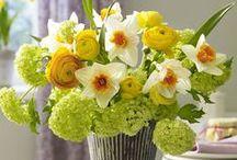 International Floral Inspiration