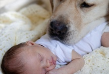 Babies with their babies / Babies, Toddlers and children with their 'babies'. Pets are perfect companions for our kids. DYT?