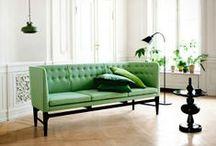 Shades of Green / by Feray Celik Ozyurt