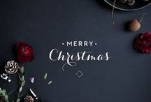 Holiday Party / Sparkle and Shine! / by Dark Pony Designs
