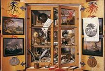 Cabinets of Wonder Cabinets of Curiosity