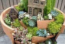Gardening / by Nancy Fulmer