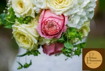 Wedding flowers <3 / by PhotoExpressionsLLP