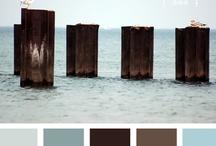 Colors Pallette / Palleta de Cores