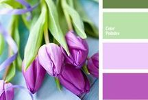 Mood Boards and Color Schemes / Color schemes and mood boards for design.