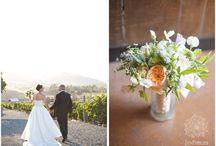 Weddings & Elopements / Jen Philips Photography: Recent Weddings and Elopements