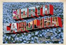 Keep NC Beautiful!