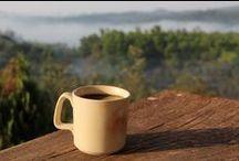 Coffee, chocolate and tea / by Eva Bravo