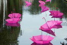 It´s PINK!  / #pink, #colour http://www.pinterest.com/nlappalainen/it-s-pink/