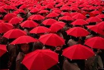 It´s RED / #red, #colour http://www.pinterest.com/nlappalainen/it-s-red/